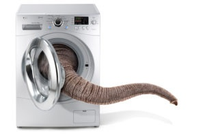 LG ElephantTrunk