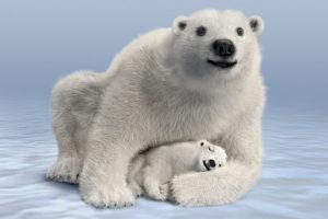 Mom & Cub 800x533